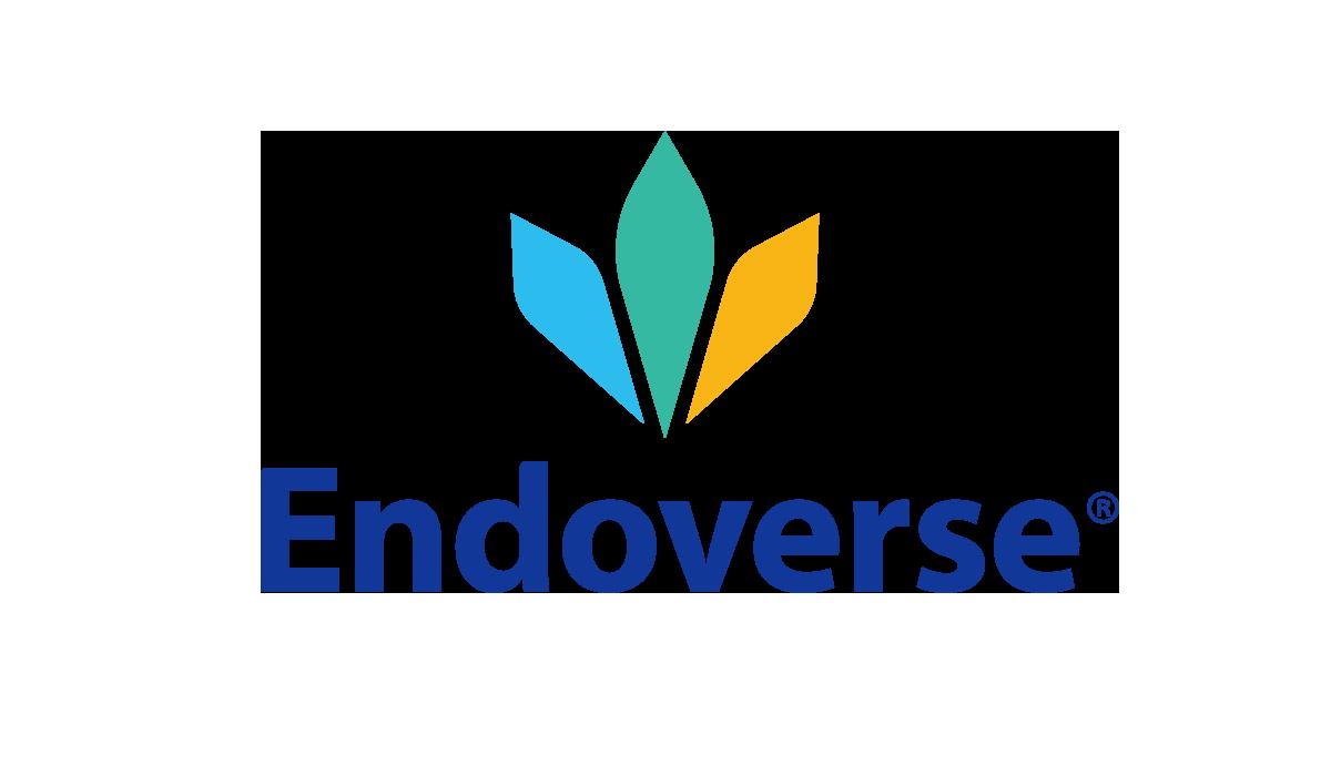 Endoverse